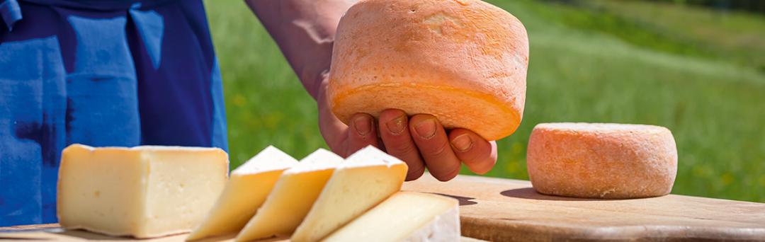 Käse und Milchprodukte vom Bauern